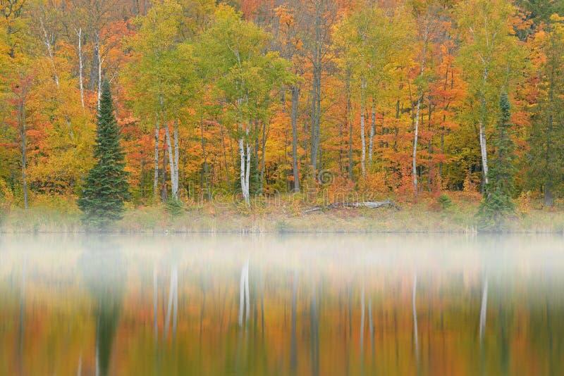 Autumn Shoreline Alberta Lake stock fotografie