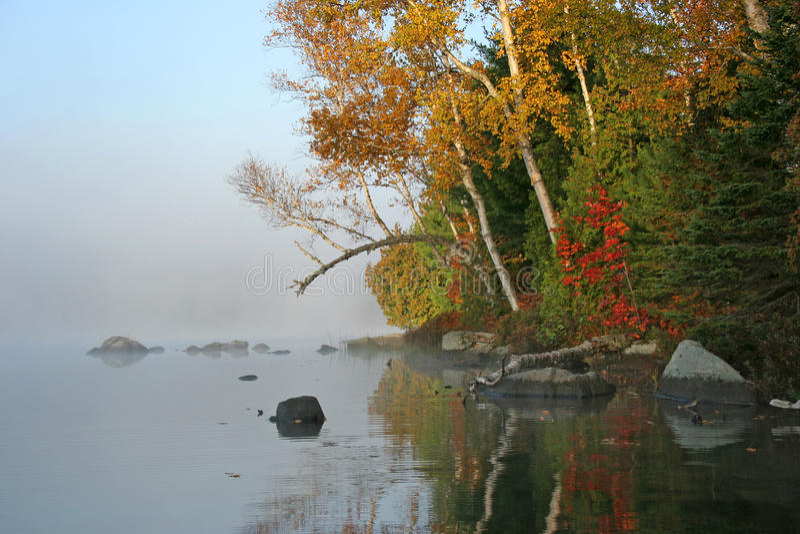 Autumn Shoreline - Haliburton, Ontario stock foto's