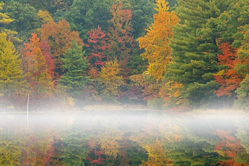 Autumn Shoreline Hall Lake in Fog. Foggy autumn landscape of the shoreline of Hall Lake with mirrored reflections in calm water, Yankee Springs State Park royalty free stock images