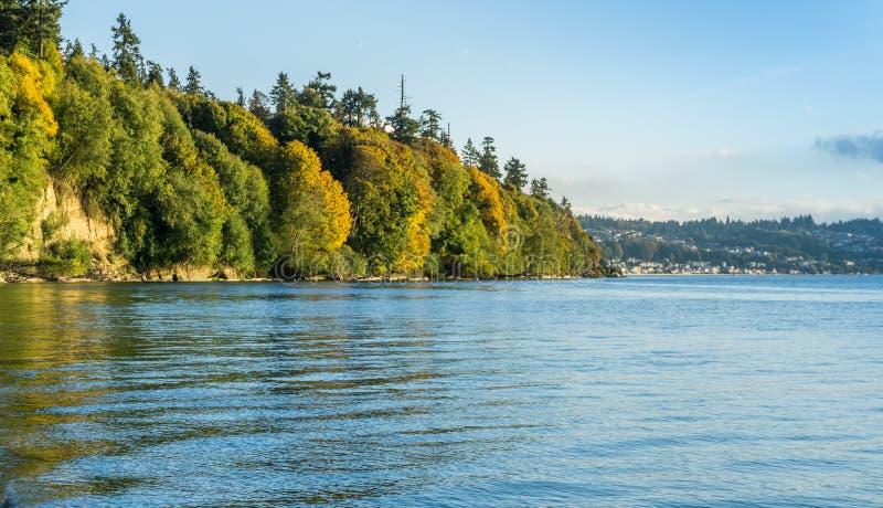 Autumn Shoreline Scene 3 stock foto