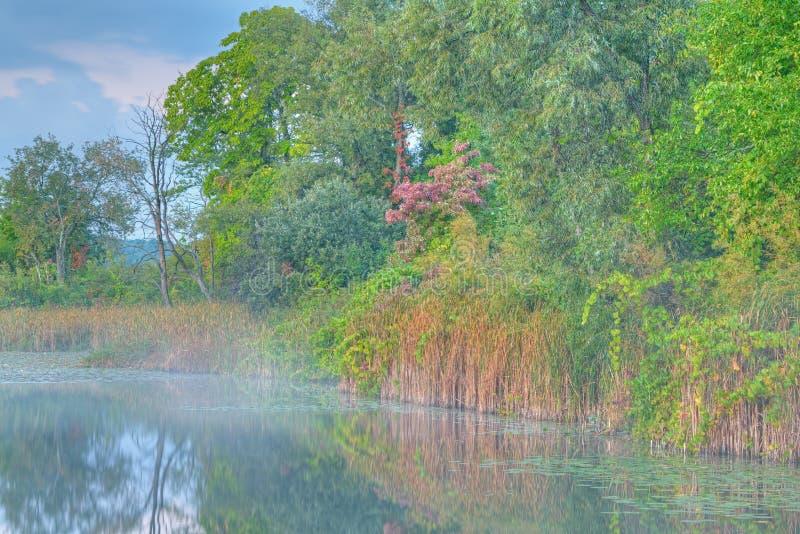 Autumn Shoreline Whitford Lake Royalty Free Stock Images
