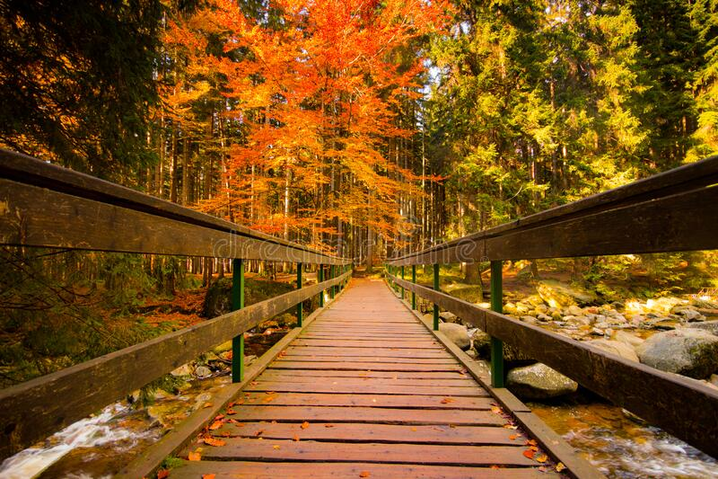 Autumn shot of a beautiful bridge over a Mumlava River in the colorfull forest. Autumn shot of a beautiful bridge and Mumlava river. Colorfull forest in stock photography