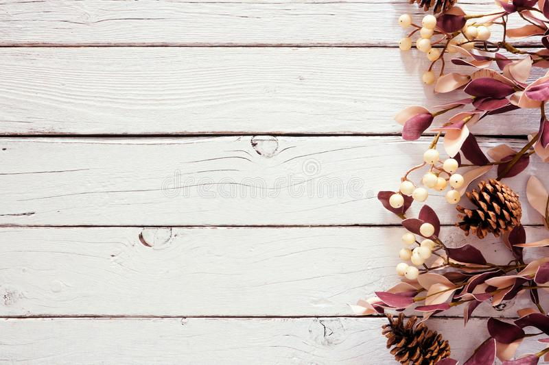 Autumn side border border of berries, pine cones and dusty red bladeren against a white wood background royalty-vrije stock fotografie