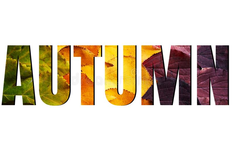 Autumn sign isolated on white background, ads. Autumn sale banner with green, yellow and red leaves. Fall concept royalty free stock photography