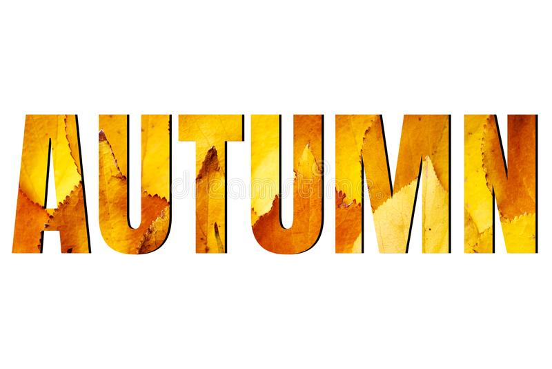 Autumn sign isolated on white background, ads. Autumn sale banner with yellow leaves. Fall concept stock photography