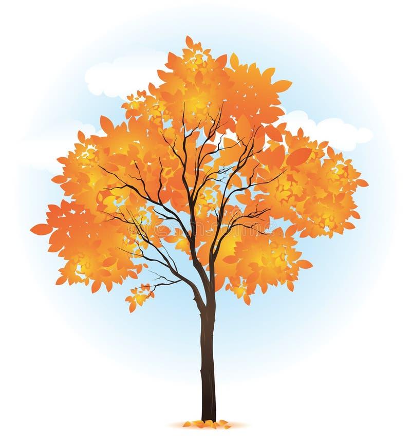 Autumn single tree. Stylized illustration stock illustration