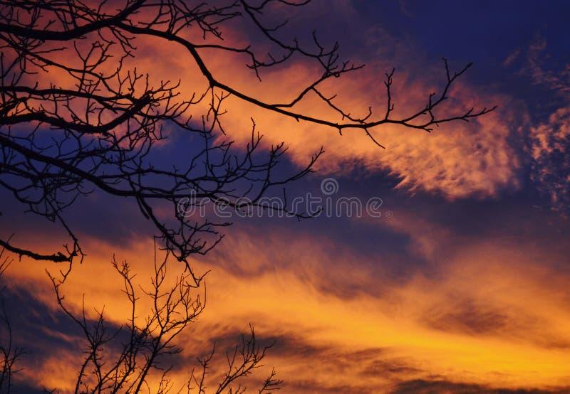 Autumn Sky image libre de droits