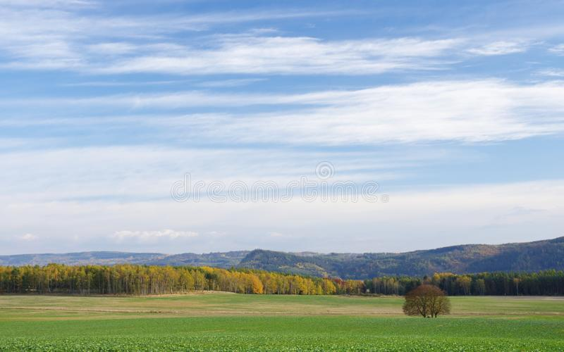 Autumn sky over the landscape stock image
