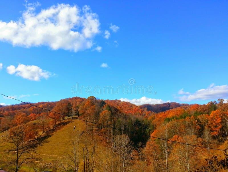 Autumn Skyline fotografía de archivo libre de regalías