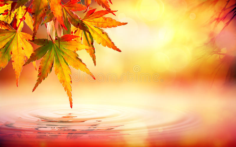 Download Autumn Spa Background With Red Leaves Stock Image - Image of lake, bokeh: 58346477