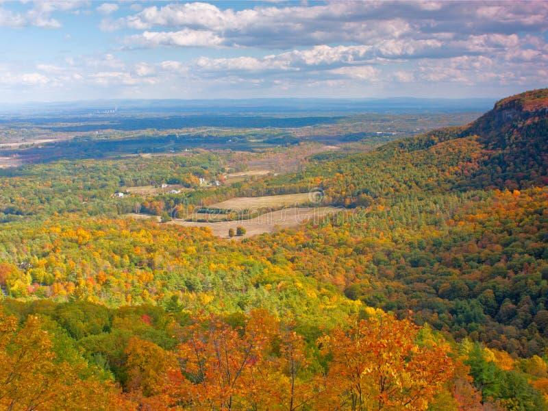 Autumn Splendor revelou com as laranjas e os amarelos imagem de stock royalty free