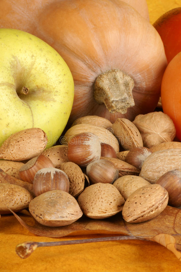 Download Autumn still life stock photo. Image of thanksgiving - 16854206