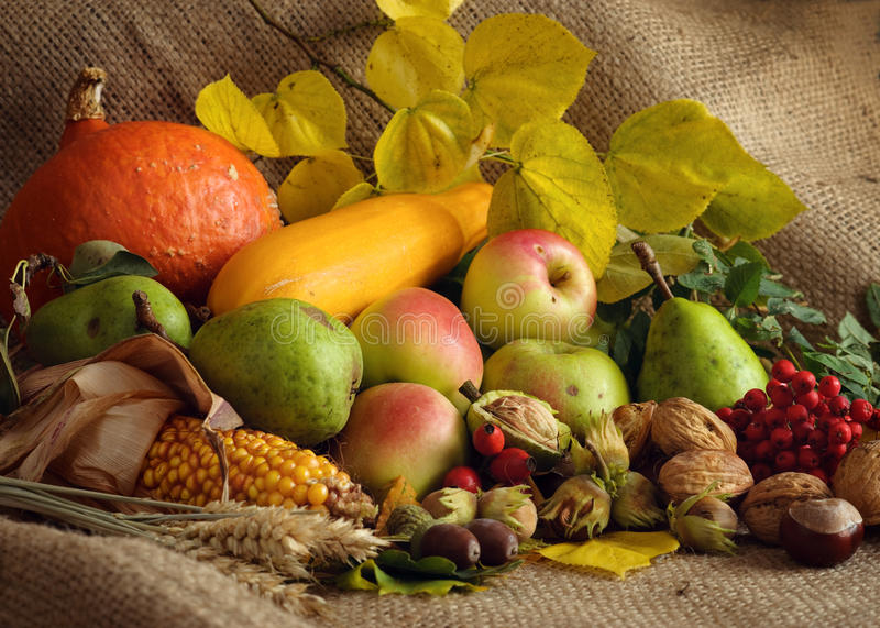 Download Autumn Still-life stock image. Image of nature, harvest - 21307641