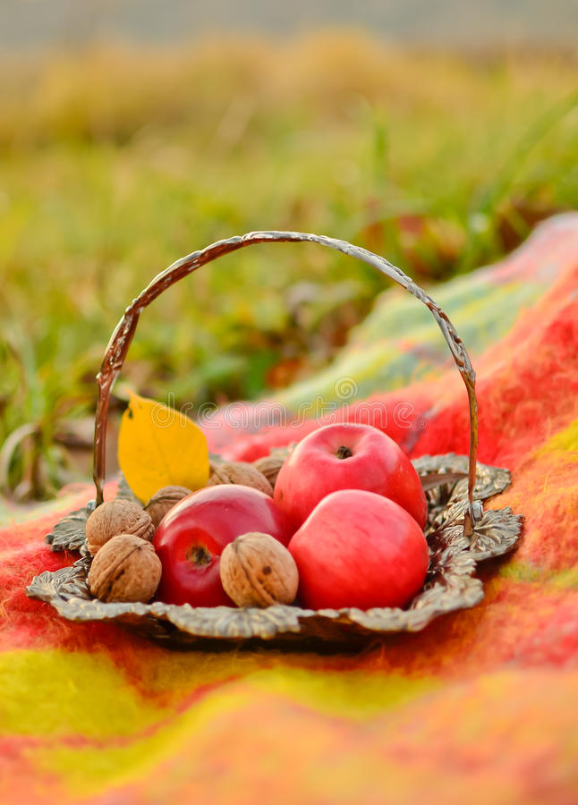 Download Autumn Still Life Royalty Free Stock Photos - Image: 22043488