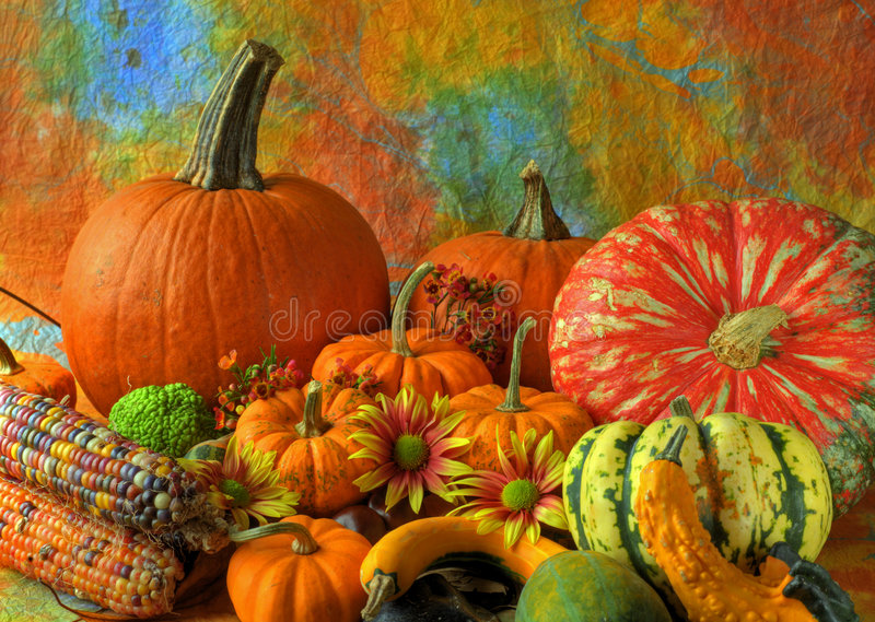Autumn still life. Still life of pumpkins gourds and indian corn royalty free stock photos