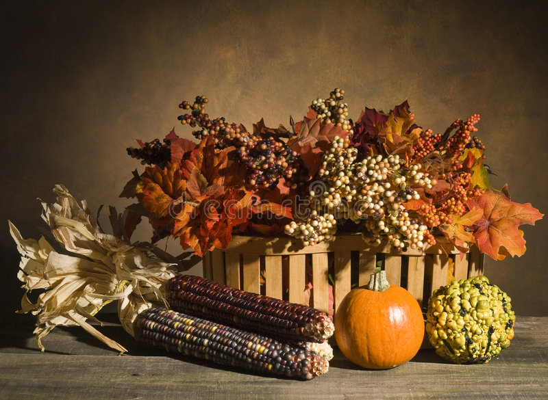 Autumn Still Life. With pumpkin, gourd, leaves, berries and corn on wood table royalty free stock images
