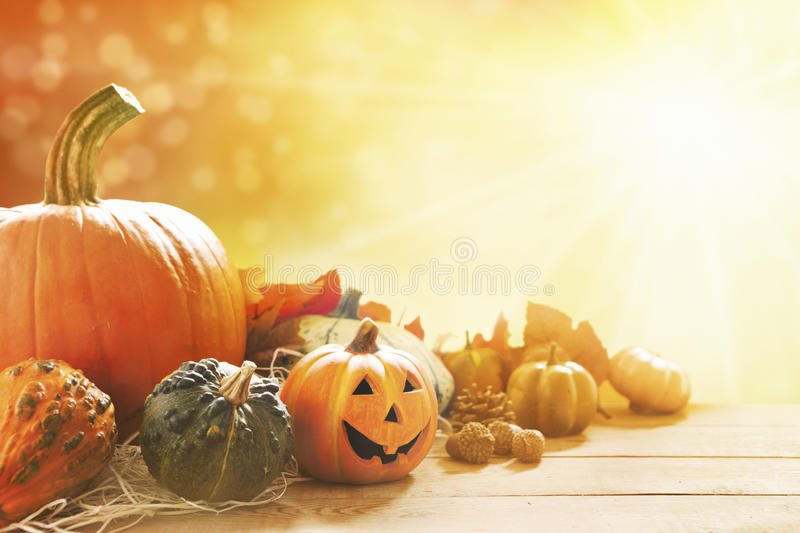 Autumn still life in bright sunlight. A rustic autumn still life with pumpkins, a small Jack O'Lantern and golden leaves on a wooden surface. Bright sunlight stock photography