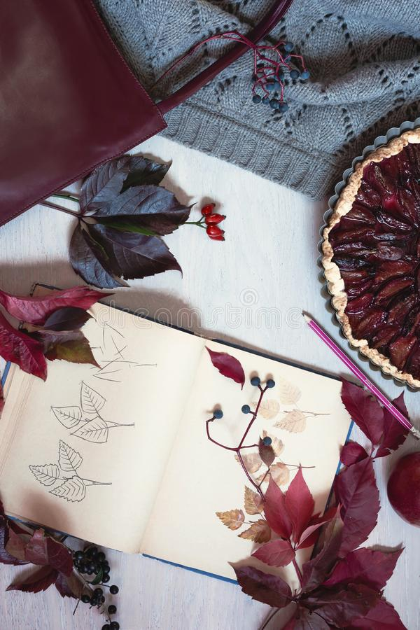 Autumn still life in burgundy colors. Autumn or winter concept,. Lifestyle blogers. Flat lay, top view stock image