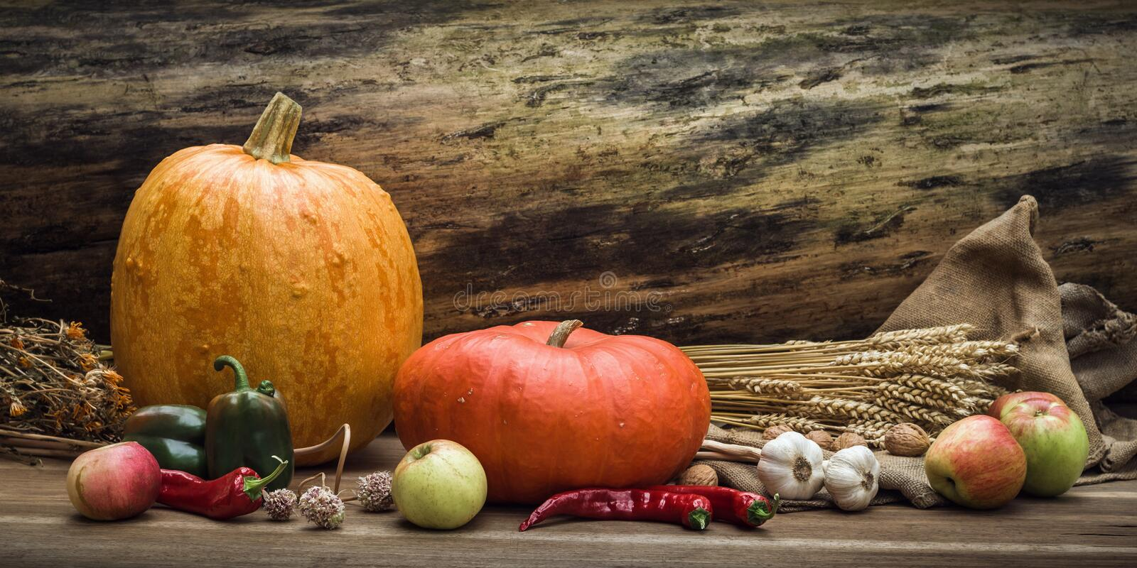 Autumn still life concept with free space for text or congratulations. ripe pumpkins and other fall vegetables and fruits on a stock image