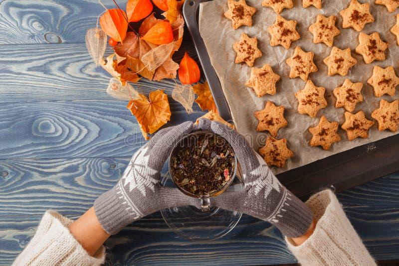 Autumn still life cup of tea, the leaves stock photos