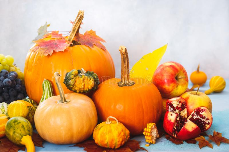 Autumn still life with edible and ornamental pumpkins and gourds, grapes, apple and pomegranate. Selective focus royalty free stock photography
