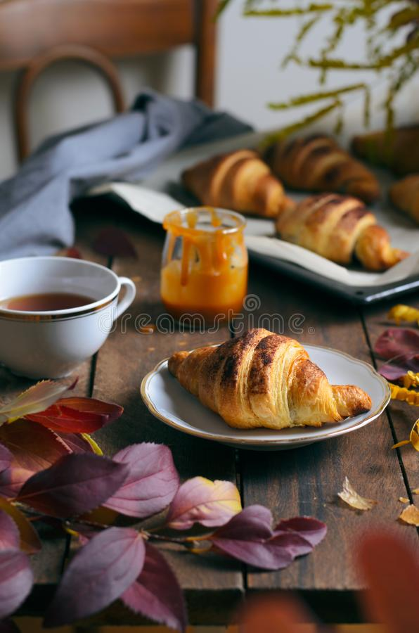 Autumn Still Life, Freshly Baked Croissants with Cinnamon and Salted Caramel, Cup of Tea and Fall Leaves on Wooden Table royalty free stock image