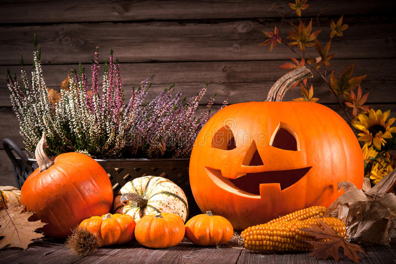 Autumn still life with Halloween pumpkins. On old wooden background royalty free stock image