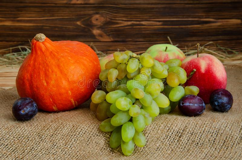 Autumn still life. Harvest of ripe apples, grapes, plums and pumpkin Hokkaido on sacking and wooden background stock images