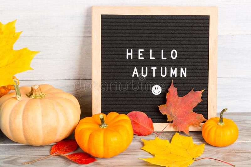Autumn still life image with pumpkins, colorful maple foliage and letter board with words Hello Autumn against white wooden wall.  stock photography
