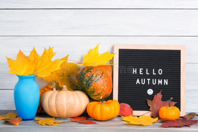 Autumn still life image with pumpkins, vase with colorful maple foliage and letter boards with words Hello Autumn against white. Wooden wall royalty free stock photo