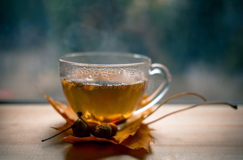 Autumn Still Life : Le thé sur l'érable part sur une table en bois près de la fenêtre Le ` s du soleil rayonne sur une tasse de t image stock