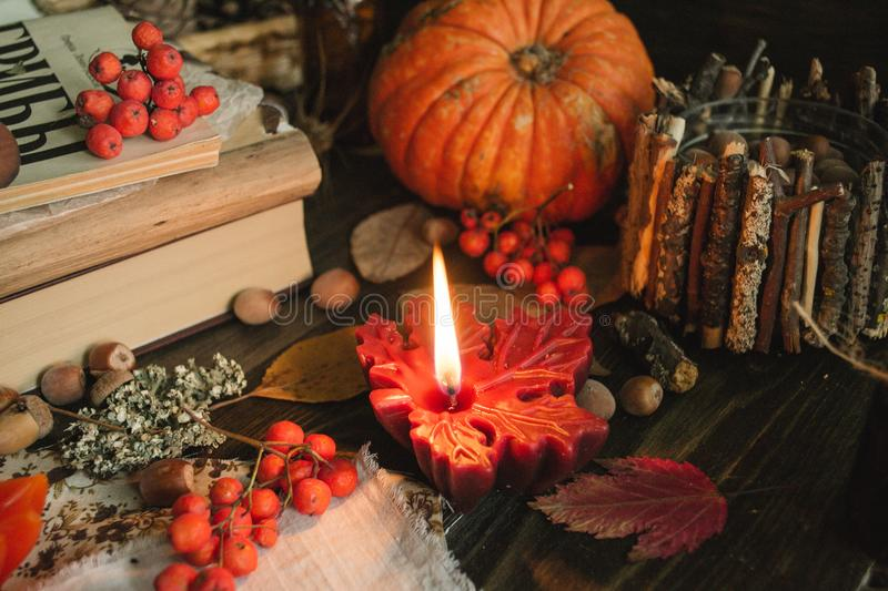 Autumn still life. With maple leaf candle fresh pumpkin and gourds royalty free stock photography