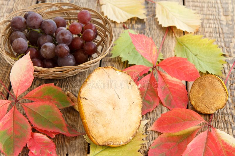 Autumn still life with mushrooms, grapes in wicker basket, green stock image