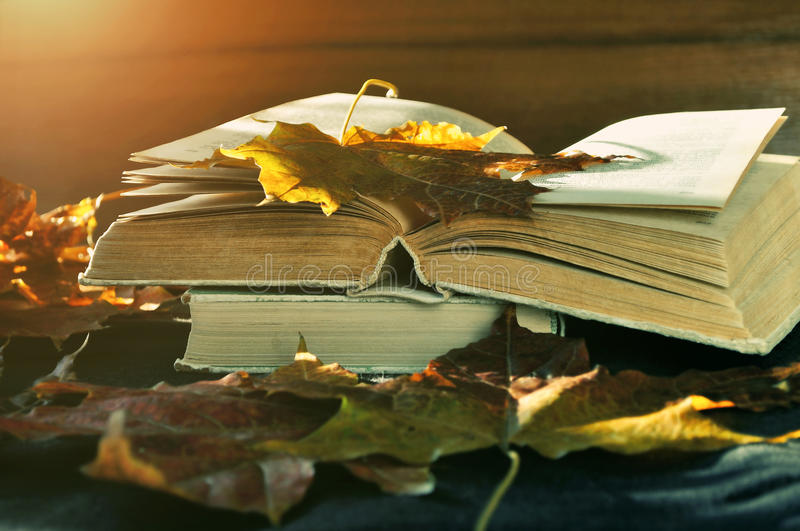 Autumn still life -old books among the dry autumn leaves and bright sunlight royalty free stock photos