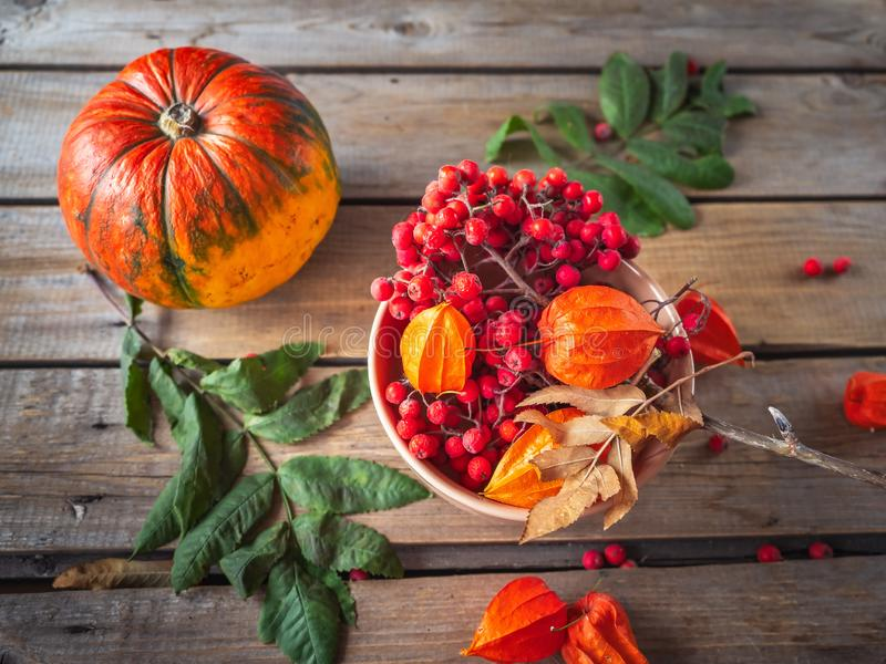 Autumn still life with pumpkin, rowan and physalis in a ceramic arrow in orange tones on an unpainted wooden table. Top view royalty free stock photos