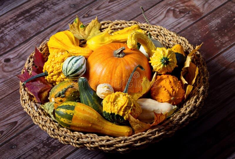 Autumn still-life with pumpkins. Yellow and orange ornamental pumkins stock photo