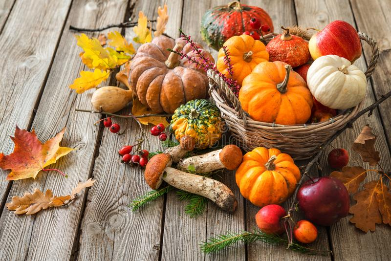 Autumn still life with pumpkins, corncobs, fruits and leaves royalty free stock image