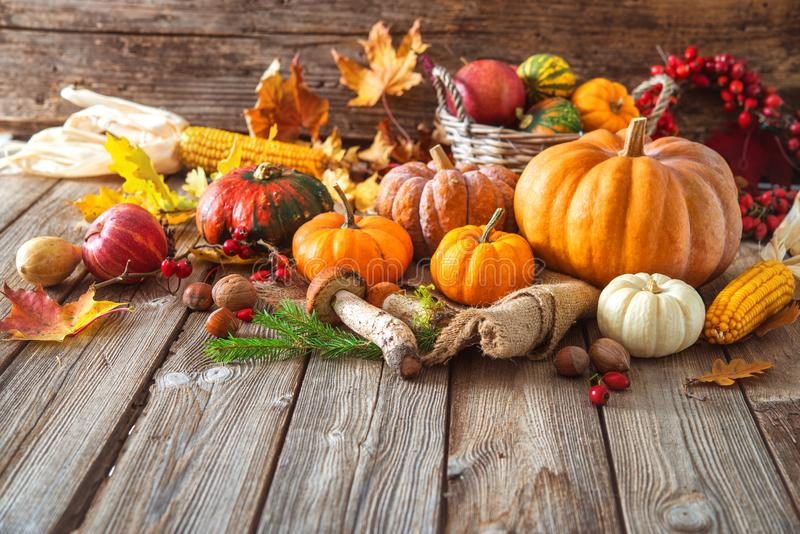 Autumn still life with pumpkins, corncobs, fruits and leaves. On wooden background stock image