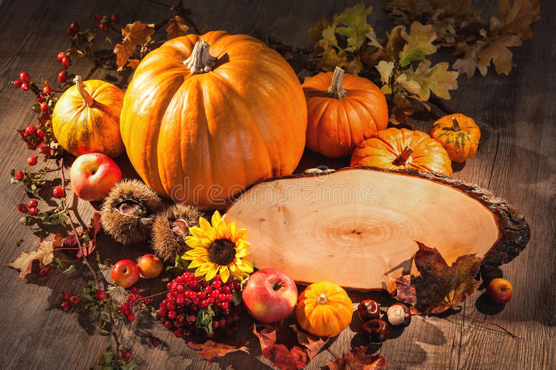 Autumn still life with pumpkins, fruits and berries with copy sp stock images