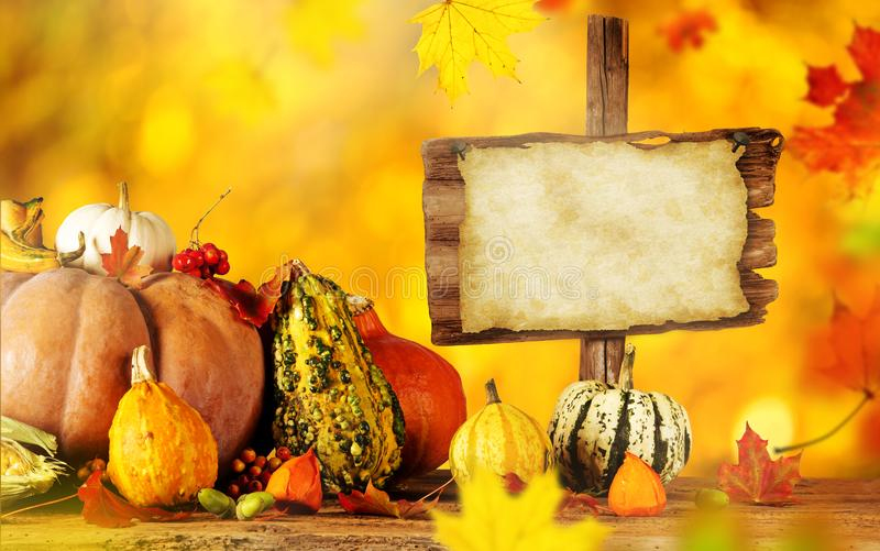 Autumn still-life with pumpkins and leaves. stock photography