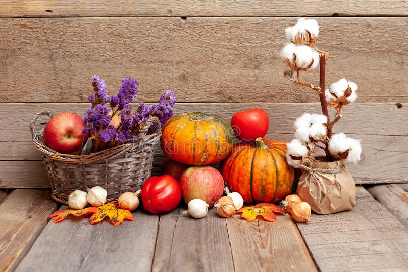 Autumn still life with pumpkins, vegetables and cotton on a rust stock photography
