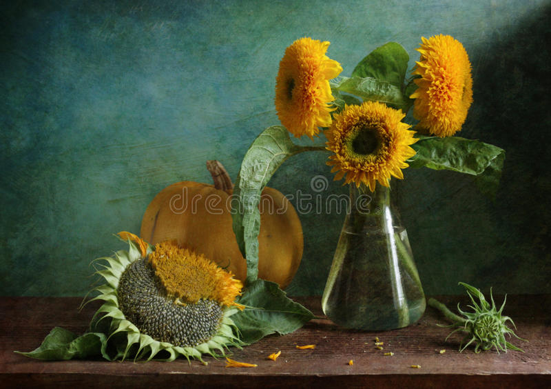 Autumn. Still life with sunflowers in the green background stock photography