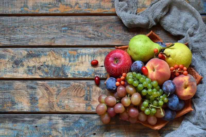 Autumn still life for thanksgiving with autumn fruits and berries on wooden background - grapes, apples, plums, viburnum, dogwood. stock photo