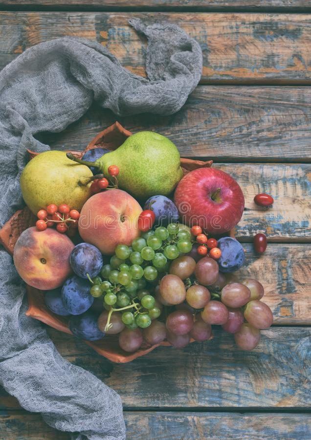 Autumn still life for thanksgiving with autumn fruits and berries on wooden background - grapes, apples, plums, viburnum, dogwood. royalty free stock images
