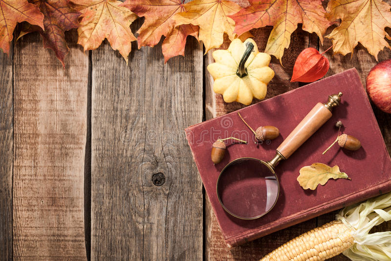 Autumn still life. Top view stock images