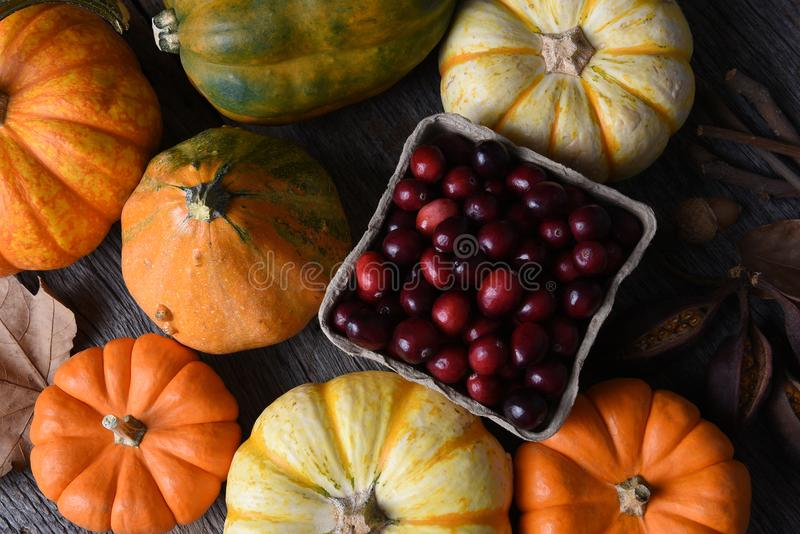 Fall Still Life with Cranberries royalty free stock photo