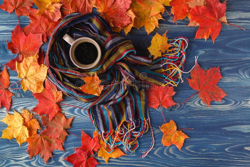 Autumn still life - Warm knitted scarf and cup of coffee on rust royalty free stock images
