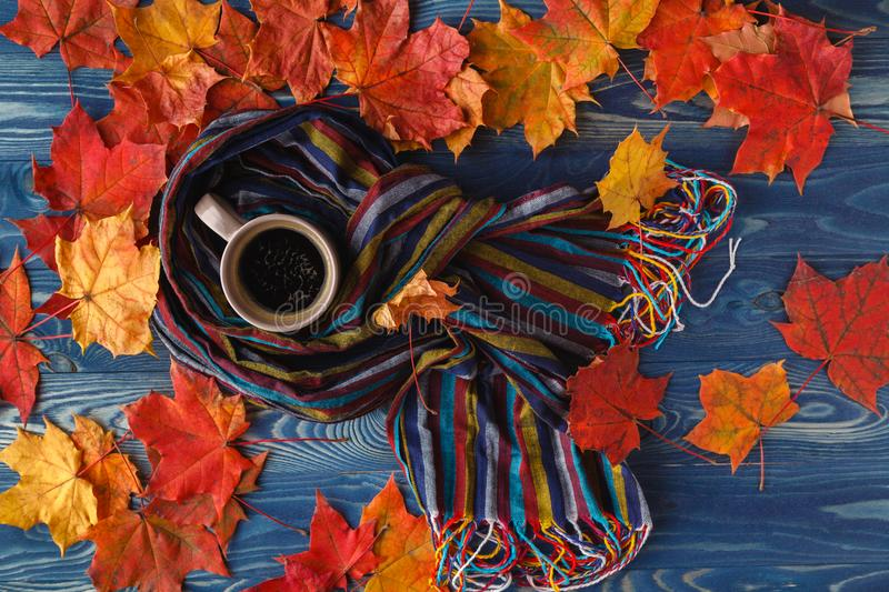 Autumn still life - Warm knitted scarf and cup of coffee on rust royalty free stock photography