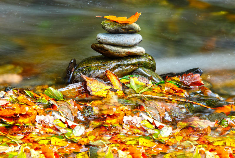 Autumn stones. Autumn colored leaves and stacked zen stones on forest floor royalty free stock photography