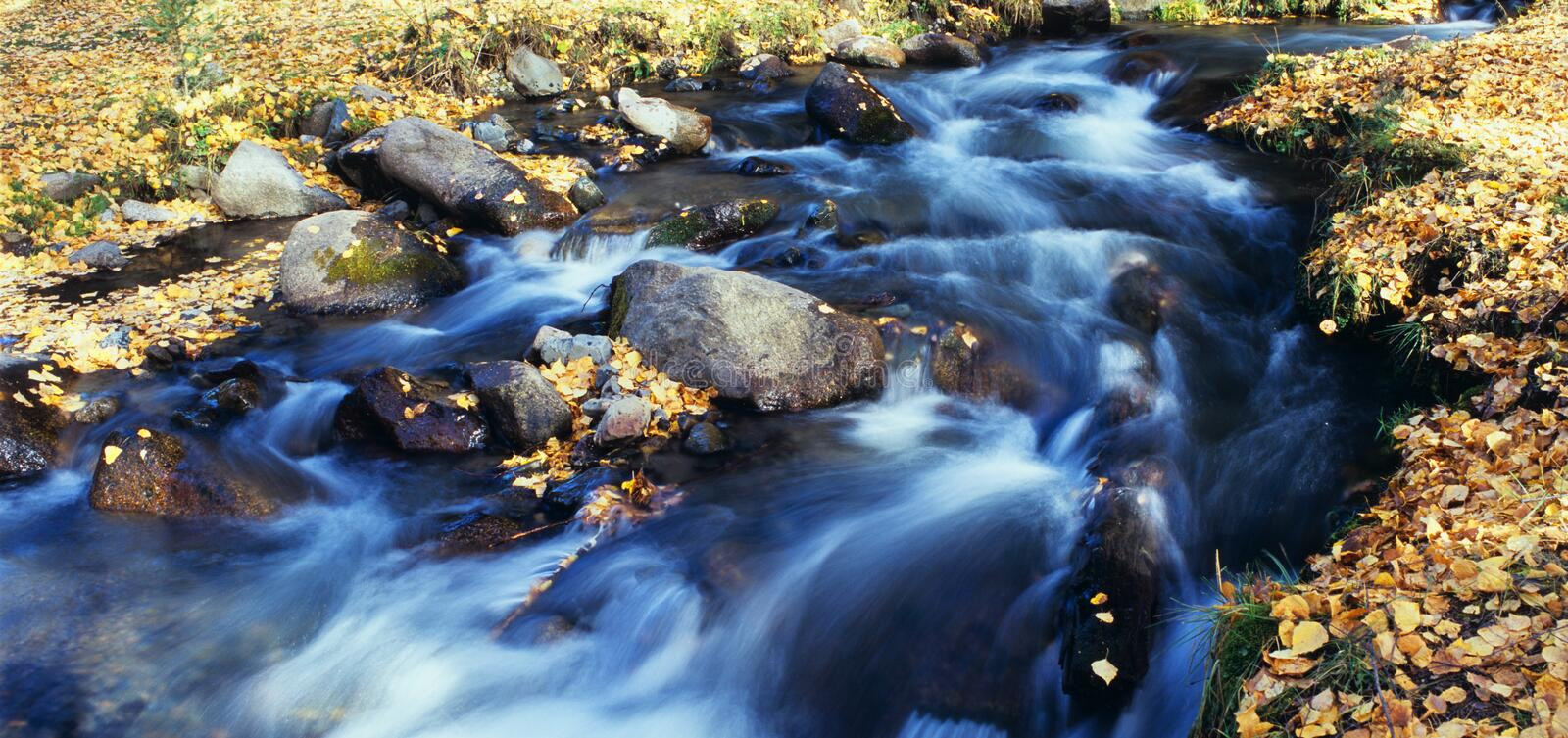 Download Autumn stream stock image. Image of beauty, green, chinese - 14248789